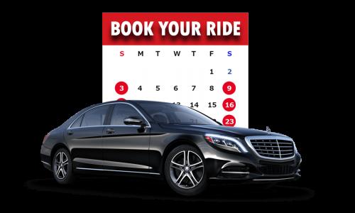 newton airport car rental service
